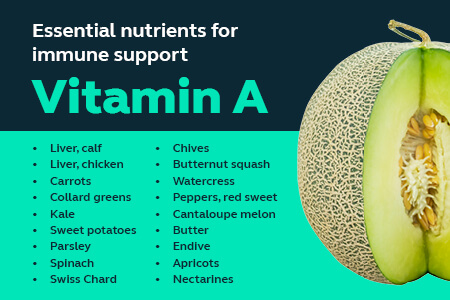 A list of foods that contain vitamin A - like sweet potato and kale