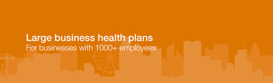 Large business health plans.