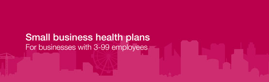 Small business health plans.